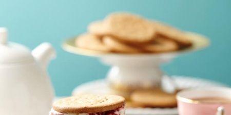 Serveware, Dishware, Finger food, Food, Cuisine, Ingredient, Drinkware, Macaroon, Dessert, Baked goods,