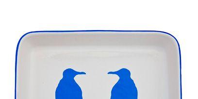Blue, Beak, Bird, Aqua, Azure, Cobalt blue, Electric blue, Feather, Seabird,