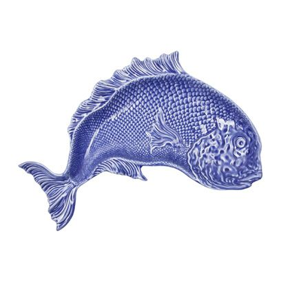 Organism, Electric blue, Fish, Azure, Fin, Cobalt blue, Marine biology, Ray-finned fish, Graphics, Fish,
