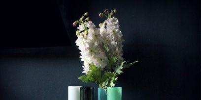 Flower, Petal, Cut flowers, Vase, Still life photography, Bouquet, Flower Arranging, Artifact, Flowering plant, Interior design,