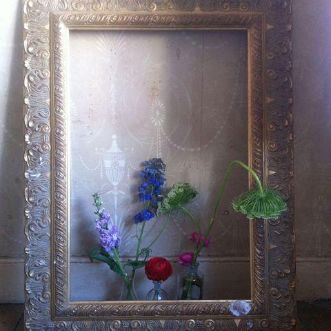 Botany, Flowering plant, Art, Majorelle blue, Still life photography, Flower Arranging, Creative arts, Floral design, Plant stem, Visual arts,