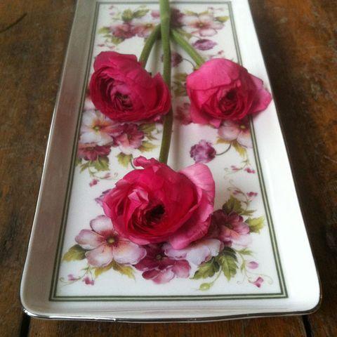 Petal, Flower, Pink, Flowering plant, Floristry, Garden roses, Purple, Hybrid tea rose, Magenta, Rose family,
