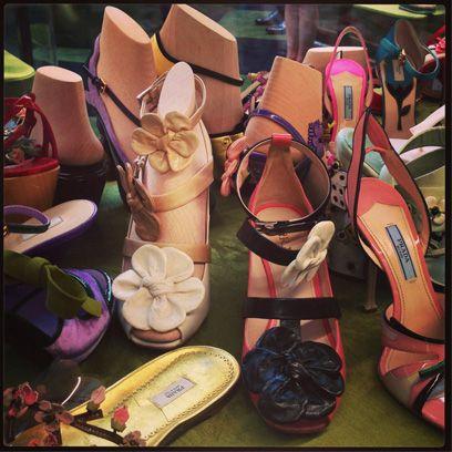 Brown, Shoe, Tan, Serveware, Beige, Collection, Sandal, Peach, Retail, Dishware,