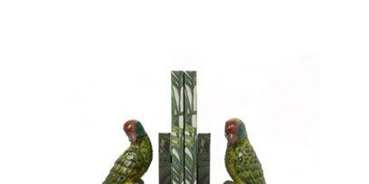 Green, Organism, Branch, Bird, Beak, Parrot, Wing, Adaptation, Botany, Natural material,