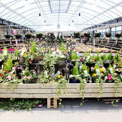 Best Garden Centres Gardening Centres London
