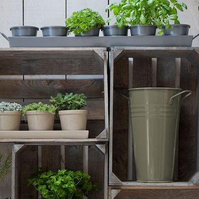 Flowerpot, Plant, Wood, Interior design, Houseplant, Grey, Herb, Vase, Pottery, Artifact,