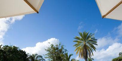 Swimming pool, Resort, Outdoor furniture, Real estate, Sunlounger, Aqua, Turquoise, Azure, Shade, Tropics,