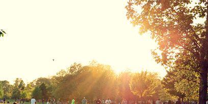 Tree, Leaf, Leisure, People in nature, Sun, Sunlight, Lawn, Park, Morning, Sunrise,