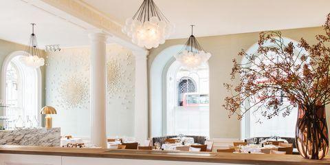 Room, Branch, Interior design, Wood, Twig, Light fixture, Furniture, Ceiling, Interior design, Wall,