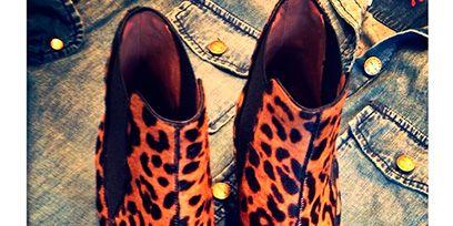 Brown, Orange, Tan, Fashion, Black, Dress shoe, Leather, Peach, Fashion design, Brand,