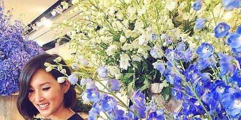 Blue, Flower, Electric blue, Petal, Flowering plant, Spring, Majorelle blue, Headpiece, Cobalt blue, Hair accessory,