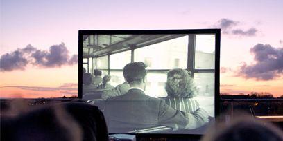 Mammal, Display device, Passenger, Sunset, Afterglow, Dusk,