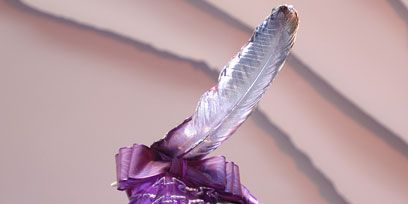 Headgear, Costume accessory, Hair accessory, Purple, Feather, Violet, Headpiece, Costume, Costume hat, Natural material,