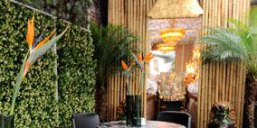 Property, Room, Table, Interior design, Furniture, Chair, Real estate, Flowerpot, Houseplant, Interior design,