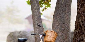 Bicycle tire, Tire, Bicycle wheel, Wheel, Bicycle wheel rim, Bicycle frame, Bicycle part, Bicycle fork, Bicycle handlebar, Bicycles--Equipment and supplies,