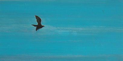 Bird, Art, Wing, Paint, Ocean, Art paint, Artwork, Watercolor paint, Painting, Illustration,