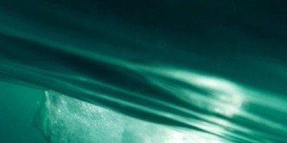 Fluid, Liquid, Underwater, Teal, Aqua, Turquoise, Marine biology, Marine mammal, Science,