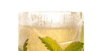Liquid, Green, Drink, Fluid, Glass, Alcoholic beverage, Drinkware, Cocktail, Tableware, Distilled beverage,