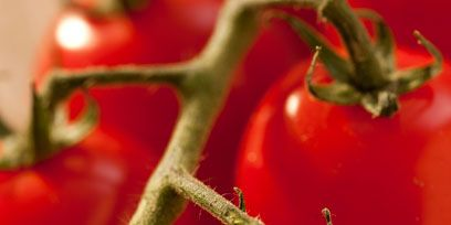 Adaptation, Botany, Ingredient, Produce, Tomato, Natural foods, Still life photography, Whole food, Macro photography, Plant stem,