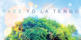 Nature, Vegetation, Green, Grass, Natural landscape, Leaf, Colorfulness, Biome, World, Aqua,