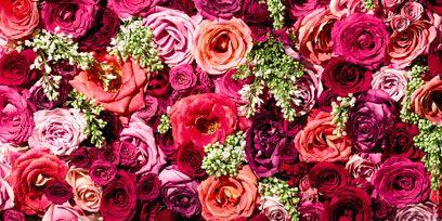 Petal, Bouquet, Flower, Red, Pink, Cut flowers, Magenta, Flowering plant, Floristry, Flower Arranging,