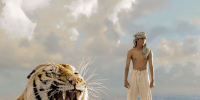 Roar, Bengal tiger, Tiger, Big cats, Vertebrate, Felidae, Carnivore, Siberian tiger, Photograph, Whiskers,