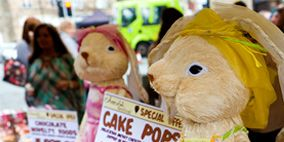 Toy, Plush, Ingredient, Stuffed toy, Produce, Natural foods, Sweetness, Fawn, Market, Berry,