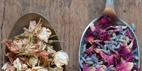 Leaf, Pink, Petal, Purple, Magenta, Jewellery, Flowering plant, Serveware, Violet, Peach,