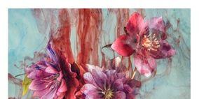 Petal, Flower, Art, Paint, Watercolor paint, Flowering plant, Botany, Artwork, Blossom, Painting,