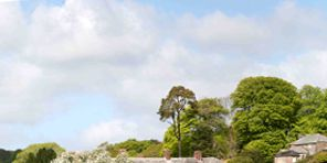 Plant, Property, Photograph, Tree, Landscape, Land lot, House, Real estate, Garden, Villa,