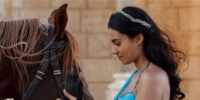 Hairstyle, Horse supplies, Bridle, Halter, Horse, Rein, Horse tack, Style, Dress, Working animal,