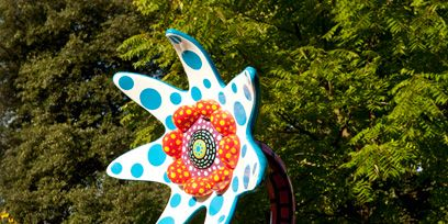 Art, Garden, Fish, Evergreen, Landscaping, Botanical garden, Polka dot,