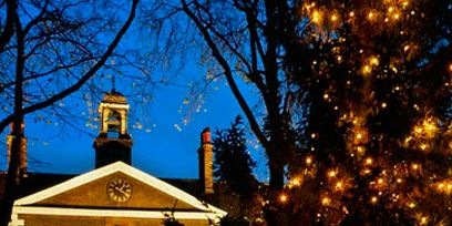 Lighting, Branch, Woody plant, Chapel, Church, Christmas decoration, Place of worship, Christmas lights, Arch, Religious institute,