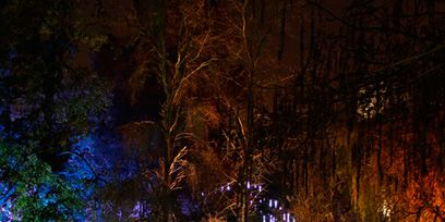 Night, Reflection, Waterway, Darkness, Midnight, Landscape lighting, Bayou, Wetland, Water feature,