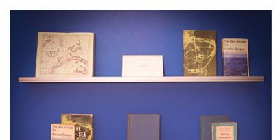 Majorelle blue, Collection, Shelving, Still life photography, Shelf, Rectangle, Still life, Artifact, Book, Collectable,