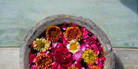 Petal, Flower, Cut flowers, Floristry, Flower Arranging, Floral design, Magenta, Artificial flower, Annual plant, Interior design,