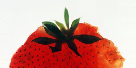 Organism, Red, Orange, Liquid, Carmine, Fruit, Colorfulness, Produce, Fish, Coquelicot,