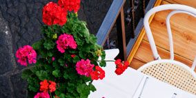 Petal, Flower, Red, Floristry, Flower Arranging, Carmine, Cut flowers, Bouquet, Home accessories, Floral design,