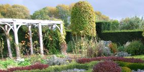 Vegetation, Shrub, Plant, Garden, Landscape, Plant community, Botany, Purple, Groundcover, Biome,
