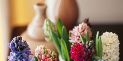 Blue, Flower, Petal, Purple, Bouquet, Cut flowers, Flowering plant, Interior design, Flowerpot, Artifact,