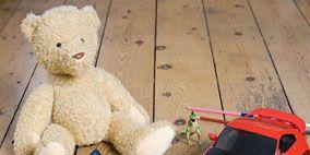 Toy, Product, Organism, Vertebrate, Terrestrial animal, Adaptation, Baby toys, Felidae, Toy vehicle, Stuffed toy,