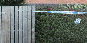 Home fencing, Picket fence, Garden, Backyard, Yard, Creative arts, Pack animal, Fence, Party supply, Dog supply,
