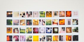 Photograph, Orange, Purple, Colorfulness, Collection, Photography,