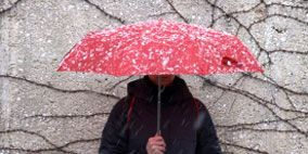 Jacket, Winter, Sleeve, Umbrella, Photograph, Outerwear, Standing, Red, Pink, Grey,