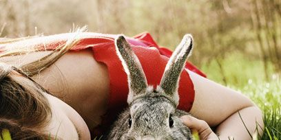 Grass, Skin, Rabbit, Hare, Rabbits and Hares, People in nature, Domestic rabbit, Adaptation, brown hare, Grass family,
