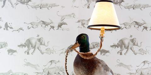 Bird, Ducks, geese and swans, Beak, Teal, Waterfowl, Water bird, Feather, Home accessories, Duck, Serveware,