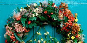 Wreath, Flower, Petal, Christmas decoration, Flower Arranging, Floral design, Cut flowers, Floristry, Still life photography, Creative arts,