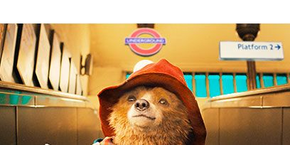 Hat, Vertebrate, Carnivore, Costume accessory, Dog, Snout, Fur, Dog breed, Collar, Toy,