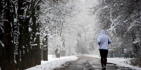 Winter, Branch, Freezing, White, Public space, Snow, Woody plant, Street, Atmospheric phenomenon, Grey,