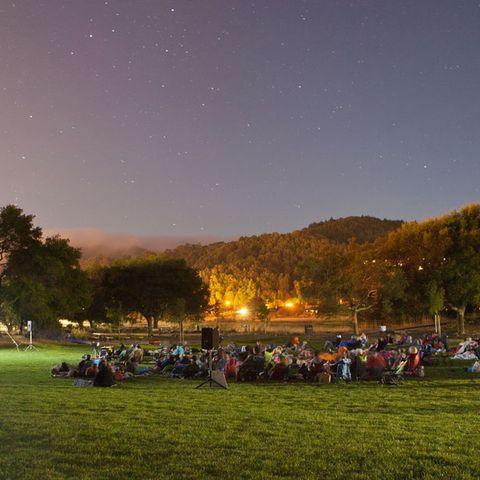 Sky, Night, Tree, Crowd, Grass, Evening, Landscape, Lawn, Grassland, Photography,